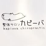 kapi-ba_logo