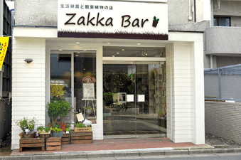 zakka-bar_img01