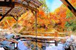 kouyou_top_01